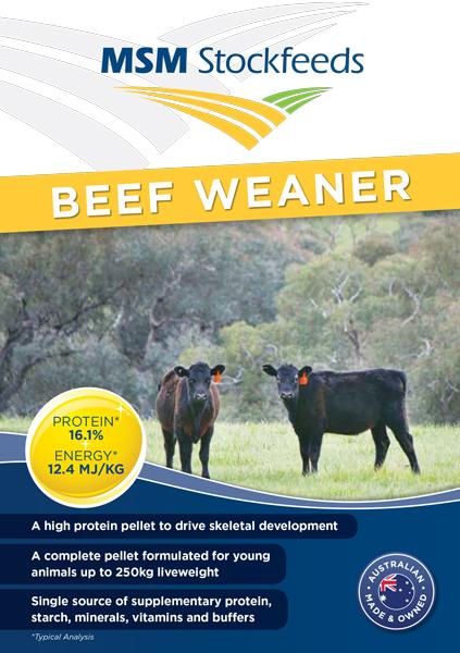 Beef-Weaner